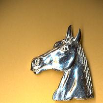 Equestrain